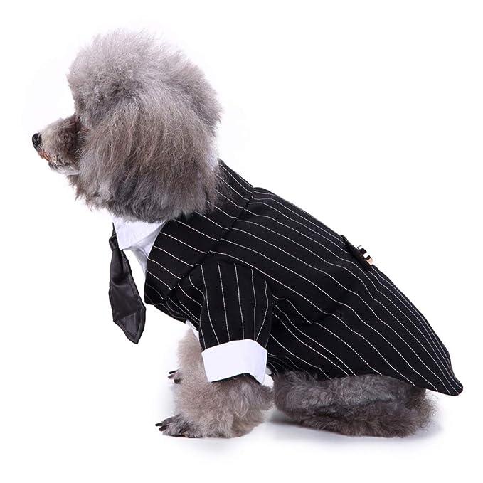 Lovejoy Store Traje de Esmoquin para Perro, Traje de ...