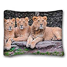 Custom Characteristic ( Animals lions predatorss down family ) Rectangle Pillowcase 20x26 inches (one side) suitable for Queen-bed PC-Bluish-48834