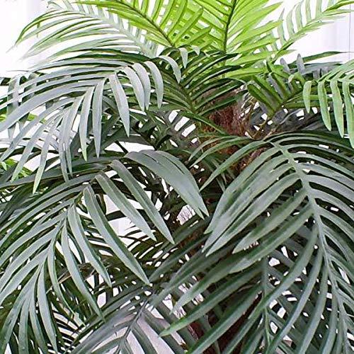 artplants.de Palmera fénix Artificial con 28 frondas, 180cm - Árbol sintético - Palma Decorativa