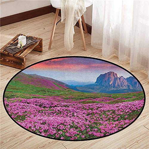 - Living Room Round Rugs,Nature,Colorful Field of Blossom in The Morning Grand Dramatic Mountains Canyon Art Print,Rustic Home Decor,2'7