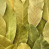 HQOExpress   Organic Bay Leaf Whole   1.5