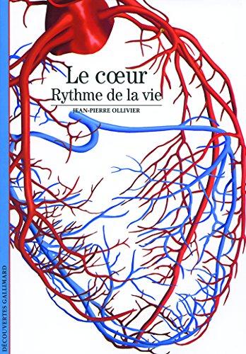Le cœur: Rythme de la vie