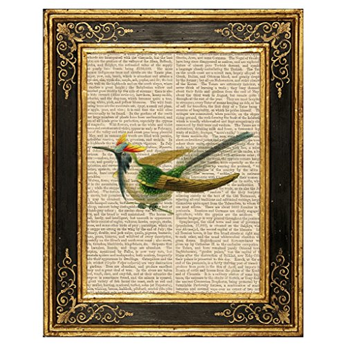 Dreamery Studio, Horned Sungem Hummingbird Art Print on Upcycled Antique Book Page, 8x10.5