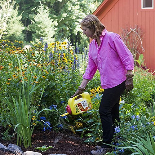 Preen garden weed preventer best trees to plant for How to use preen in vegetable garden