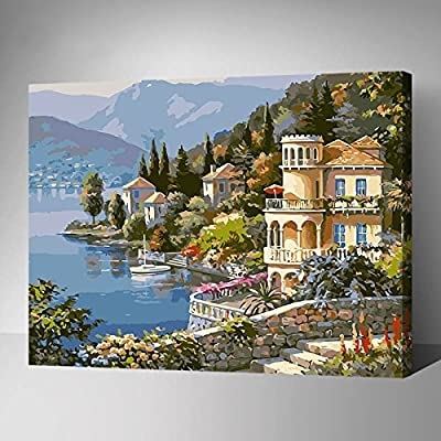 MADE4U Paint By Numbers Kits Canvas Mounted on Wood Frame with Brushes and Paints for Adults Children Seniors Junior DIY Beginner Level Acrylics Painting Kits on Canvas by MADE4U