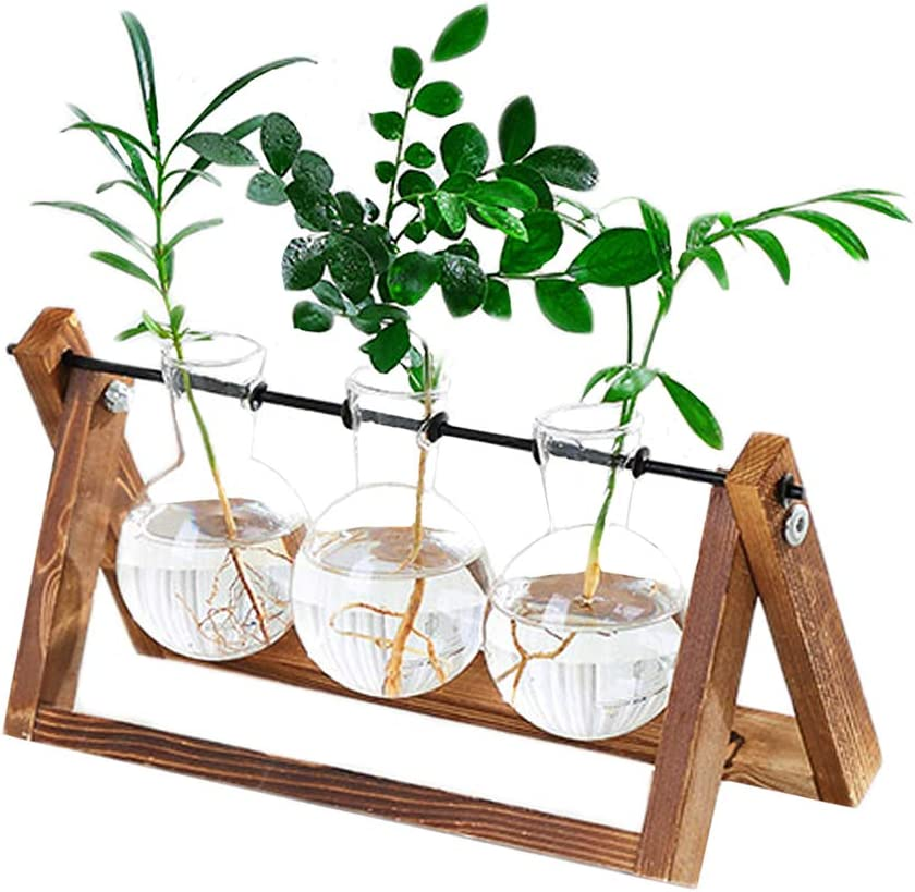 K KYMAKE Clear Glass Planter Bulb Vase with Vintage Wooden Stand – High Borosilicate – Handmade – Best Choice Decorating Your Life. 3 Terrarium