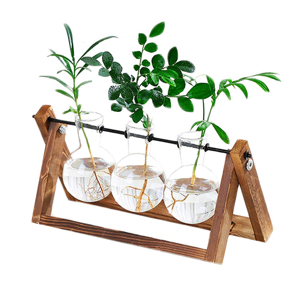 KYMAKE Clear Glass Planter Bulb Vase with Vintage Wooden Stand - High Borosilicate - Handmade - Best Choice Decorating Your Life. (3 Terrarium)