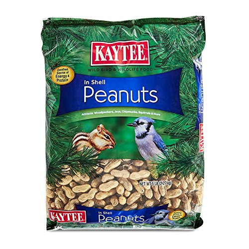 Kaytee Peanuts In Shell For Wild Birds, 5-Pound (Best Peanuts In The Shell)