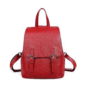 Heeecgoods Moda para mujer Mochila Casual Mochilas universitarias Chica para salir PU impermeable rojo (Color : Rojo): Amazon.es: Equipaje