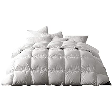 Amazon Com Globon Winter White Goose Down Comforter King Size