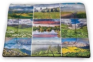 carmaxs Small Cat Food Mat Home Decor Collection Rectangle Mat for Dogs and Cats Collage of Mountain Peaks and Lake Valley Landscape Daisies in The Meadow Rural Sun Image 21 x 14 inch Green Blue