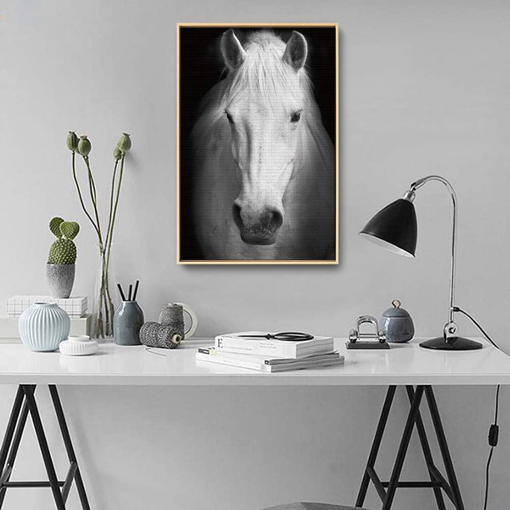 Pared Decoración Moderno Pintura Guapo Blanco Caballo Imagen Lienzo Imprimir Chorro De Tinta Animales Arte Cuadro,NoFrameA,30x40cm