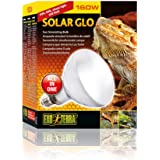 DBDPet Solar Glo (UV-B & Heat) Mercury Vapor Bulb 160w - with Attached 5 Point Pro-Tip Guide