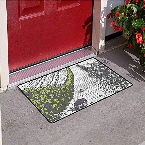 Gloria Johnson Tuscany Front Door mat Carpet Hand Drawn Style Vineyards Landscape Green Field Vintage Look Machine Washable Door mat W31.5 x L47.2 Inch Pistachio Green Pale Grey Violet