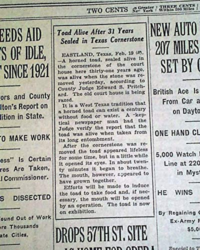 (OL' RIP THE HORNED TOAD Eastland TX Texas Courthouse STILL ALIVE! 1928 Newspaper THE NEW YORK TIMES, February 20, 1928)