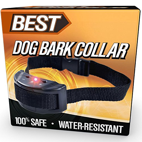 Best Anti Bark Collar (100% SAFE & EFFECTIVE) Low Voltage Electric Shock & 100% Weatherproof - Helps Stop Dog Barking, Growling, & Vocal Disobedience - Adjustable Collars to Fit Pets of All Sizes