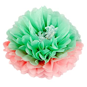 Amazon Girls Party Decorations Tissue Paper Flowers Diy Party