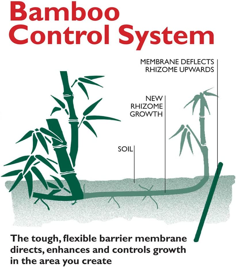 HSK Bamboo Control System 5m