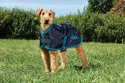 Weatherbeeta Windbreaker 420D Dog Coat (18'', Black/Teal) by Weatherbeeta