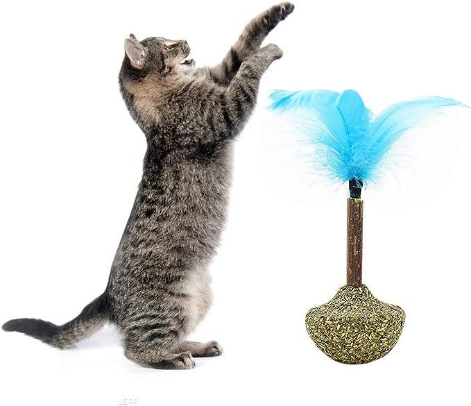 Ruibuy Juguete para Gatos con Forma de Gato, Aperitivos y Vaso, con Plumas para Gatos, Deliciosa Bola de Hierba gatera y palito de Silvervine, golosinas de Dientes de Gato: Amazon.es: Productos para
