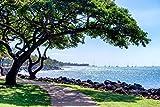 Lahaina Maui Hawaii Picture, Nautical Sailboat Beach House Print, Coastal Seascape Ocean Decor