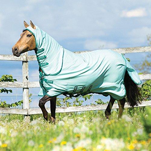 Horseware Ekzemerdecke Rambo Pony Sweetitch Hoody - Ice-Green/Green, Groesse:90