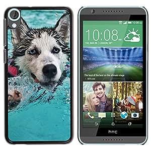 // PHONE CASE GIFT // Duro Estuche protector PC Cáscara Plástico Carcasa Funda Hard Protective Case for HTC Desire 820 / Feliz Husky /