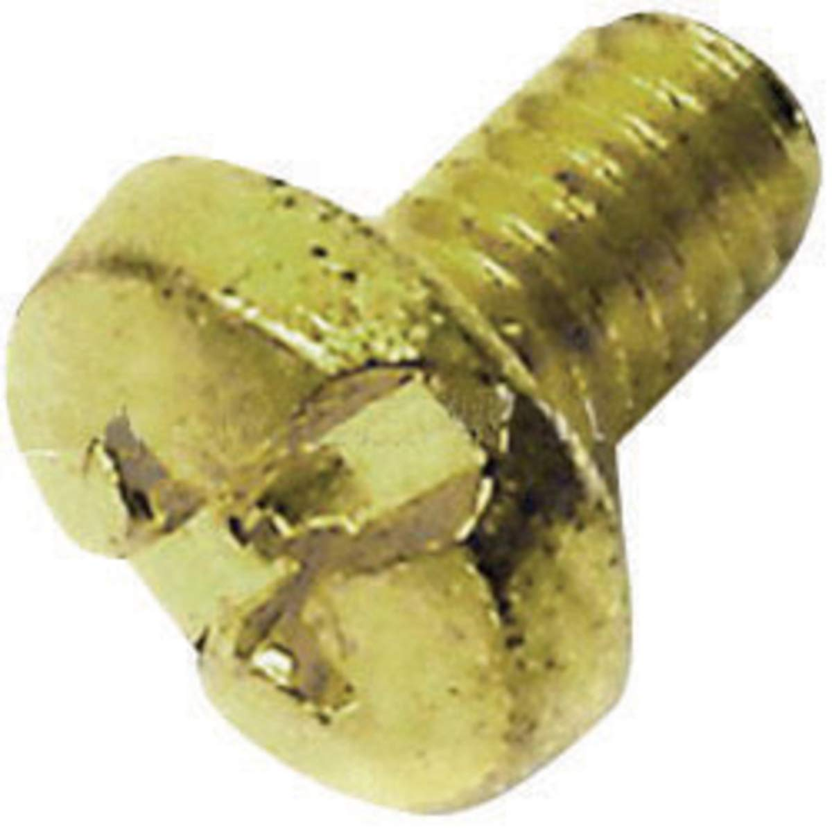 Milwaukee Brush Retaining Screw (For Use With Electric Drill/Driver, Reversing Drill And Drill Press) by Milwaukee Electric Tool Corporation (Image #1)