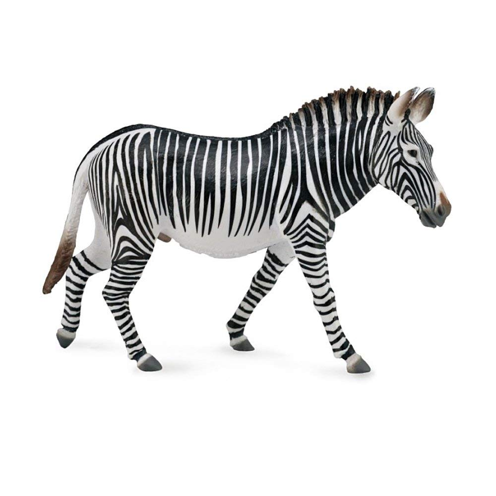 CollectA Wildlife Grevys Zebra Toy Figure Authentic Hand Painted Model