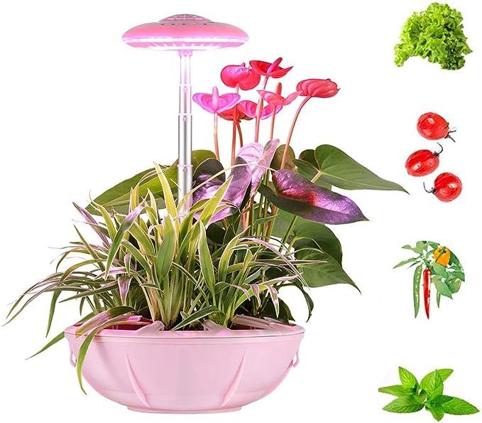 FDYD Inteligente Interior del jardín, jardín hidropónico, iluminación LED del Temporizador automático automático, en el hogar Inteligente Jardín Hierbas Frescas y Verduras Planter: Amazon.es: Hogar