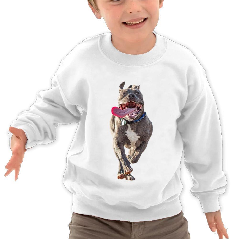 JasonMade Kids Staffordshire Bull Puppies Pet Dog Cool Crewneck Long Sleeve T-Shirt