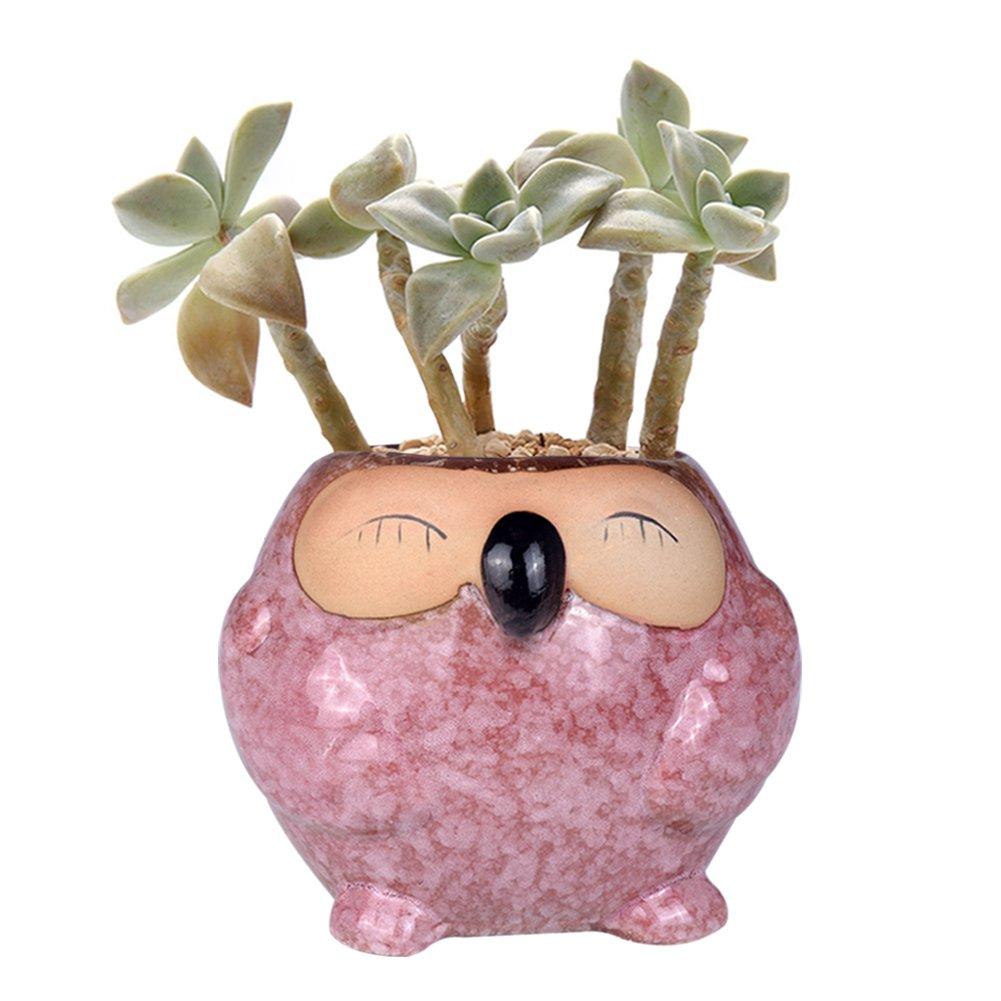 WITUSE animal owl succulent pots ceramic owl cactus planter, white porcelain kitty pot LXHY