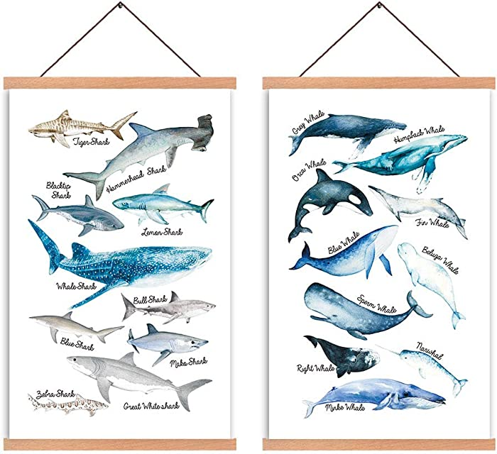 Natural Wood Magnetic Hanger Frame Poster- Shark & Whale Canvas Wall Art Print Sea Life Educational Science Wall Art Painting 28X45cm Frames Hanging Kit