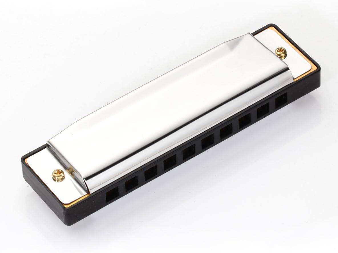 10-Hole Harmonica Argent Blues Harmonicon Alliage Harmonica Bouche Orgue Musique