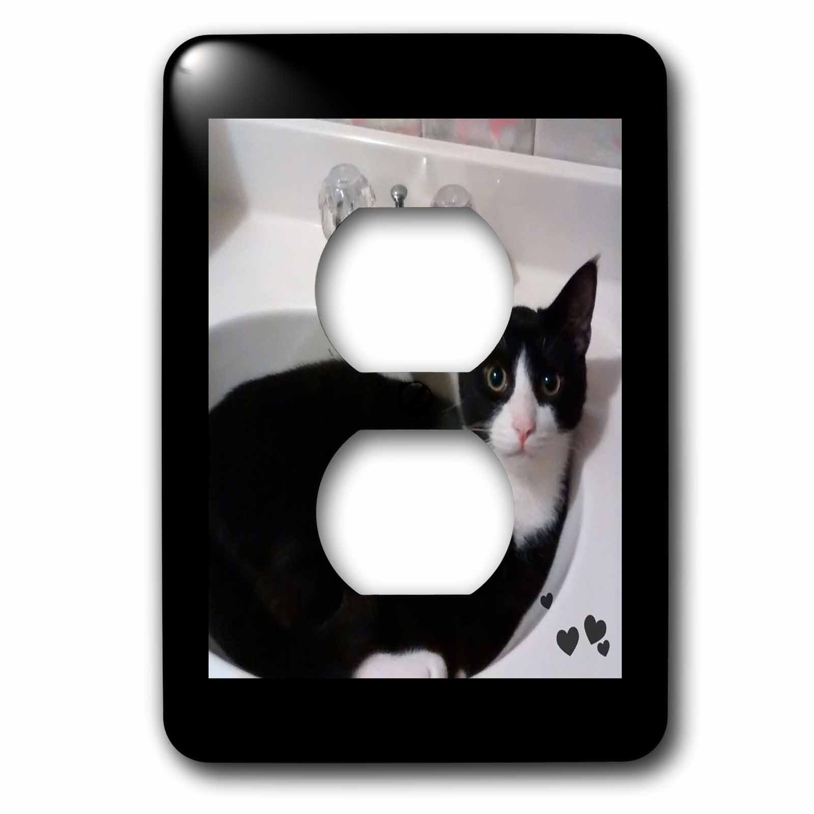 Charlyn Woodruff - CW Designs - Cat Photography - Cute Black White Tux Cat Curled up in Sink Photo - Light Switch Covers - 2 plug outlet cover (lsp_242428_6) by 3dRose