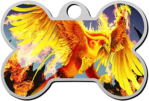 Flame Fire Phoenix - Etiqueta para Perro, Aleación de Zinc, para ...