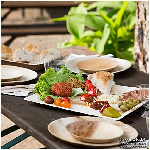 angled 25x25 cm 25 pieces BIOZOYG DTW05349 Disposable palm leaf plate compostable