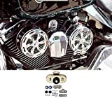 SD-320 Love Jugs Slots Chrome with Vibration Master Kit V-Twin Engine Cooling System for Harley Motorcycles