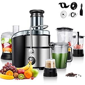 GOCOOL 5-in-1 Food Processer, Stainless Steel, 2-Speed for Fruits and Vegetable, Wide Mouth Centrifugal Juicer, Smoothie Blender, Blender, Chopper Grinder , Meat Grinder