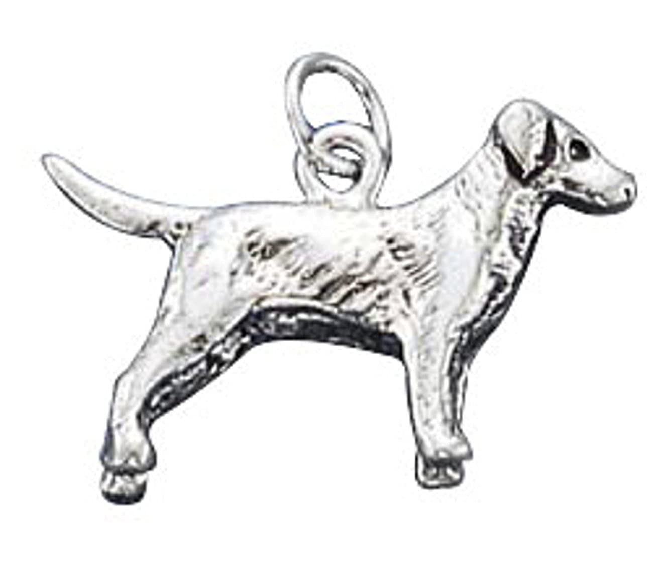 Sterling Silver Girls .8mm Box Chain 3D Labrador Retriever Dog Breed Pendant Necklace