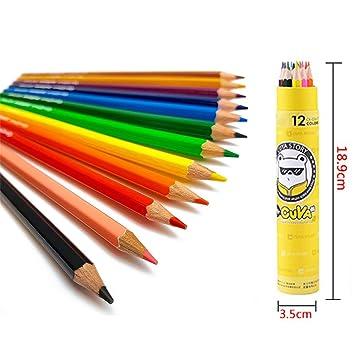 El Mejor Set De 12 Lápices De Colores De Meloive Los
