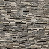 Koni Stone Citali Series Eos 5 sq. ft. Panel 6 in. x 24 in. x 0.80 in. – 1.30 in. Natural Stone