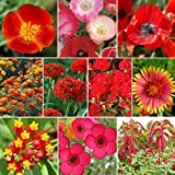 Red Head - Exclusive Red Wildflower Seed Mix - 10 Pounds, Red