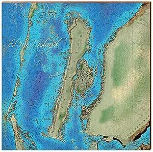 Pine Island Florida Map Home Decor Art Print On Real Wood 18 X18 Posters Prints Amazon Com