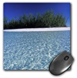 Best 3dRose Turtle Beach Mouse Pads - 3Drose 8 X 8 X 0.25 Inches Mouse Review