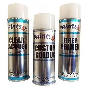 Paints4u VOLKSWAGEN Full Car Paint Aerosol Repair Kit REFLEX SILVER LA7W