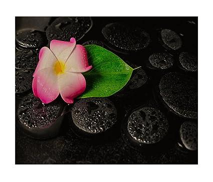 lily art garden spa