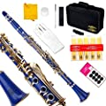 Glory B Flat Clarinet with Second Barrel, 11reeds,8 Pads cushions,case,carekit and more