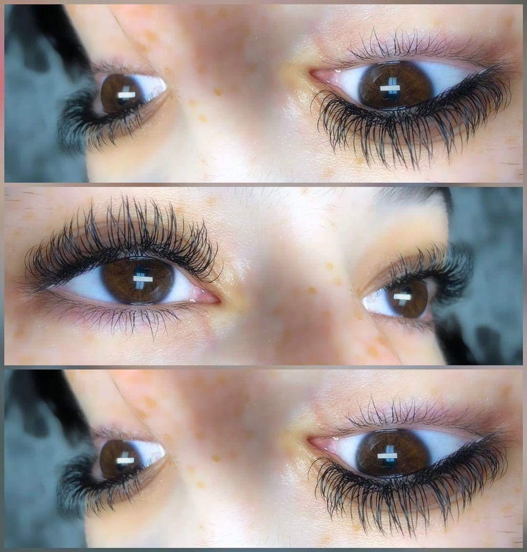 2e8b4c9afc4 Amazon.com : Ellipse Eyelash Extensions 0.15mm DD Curl 8-15mm Mixed Flat Eyelash  Extension supplies Light Lashes Matte Individual Eyelashes Salon Use Black  ...