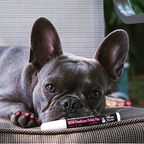 Top 10 Best Dog Nail Polish Reviews 2017-2018 - cover